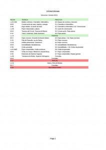 Cronograma E1